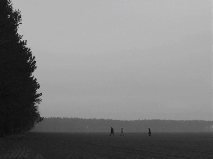 Ida crossing field